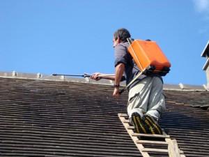 Traitement hydrofuge de toiture Le Pizou